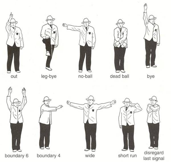 Umpire Signals in Cricket